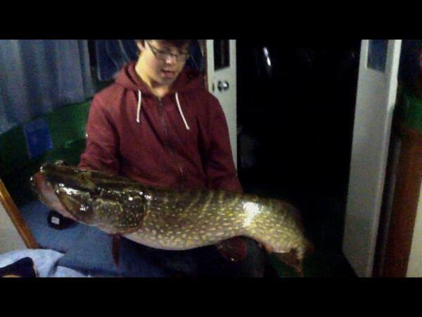 A Norfolk Broads Pike thumbnail